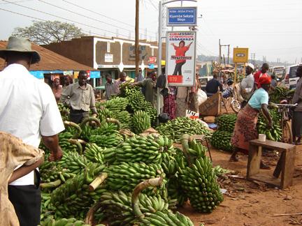 Uganda markets